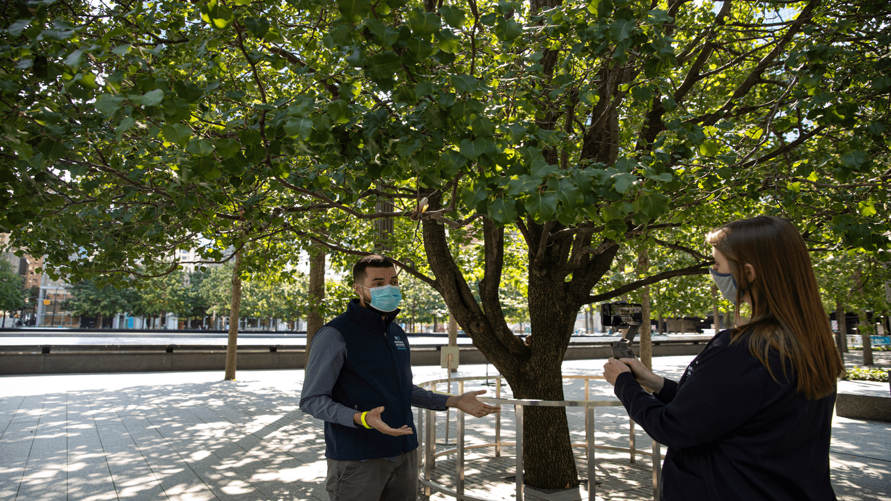 A Museum staffer gestures as he talks beneath the green leaves of the Survivor Tree on the 9/11 Memorial as another Museum staff members holds up a phone to record a tour.